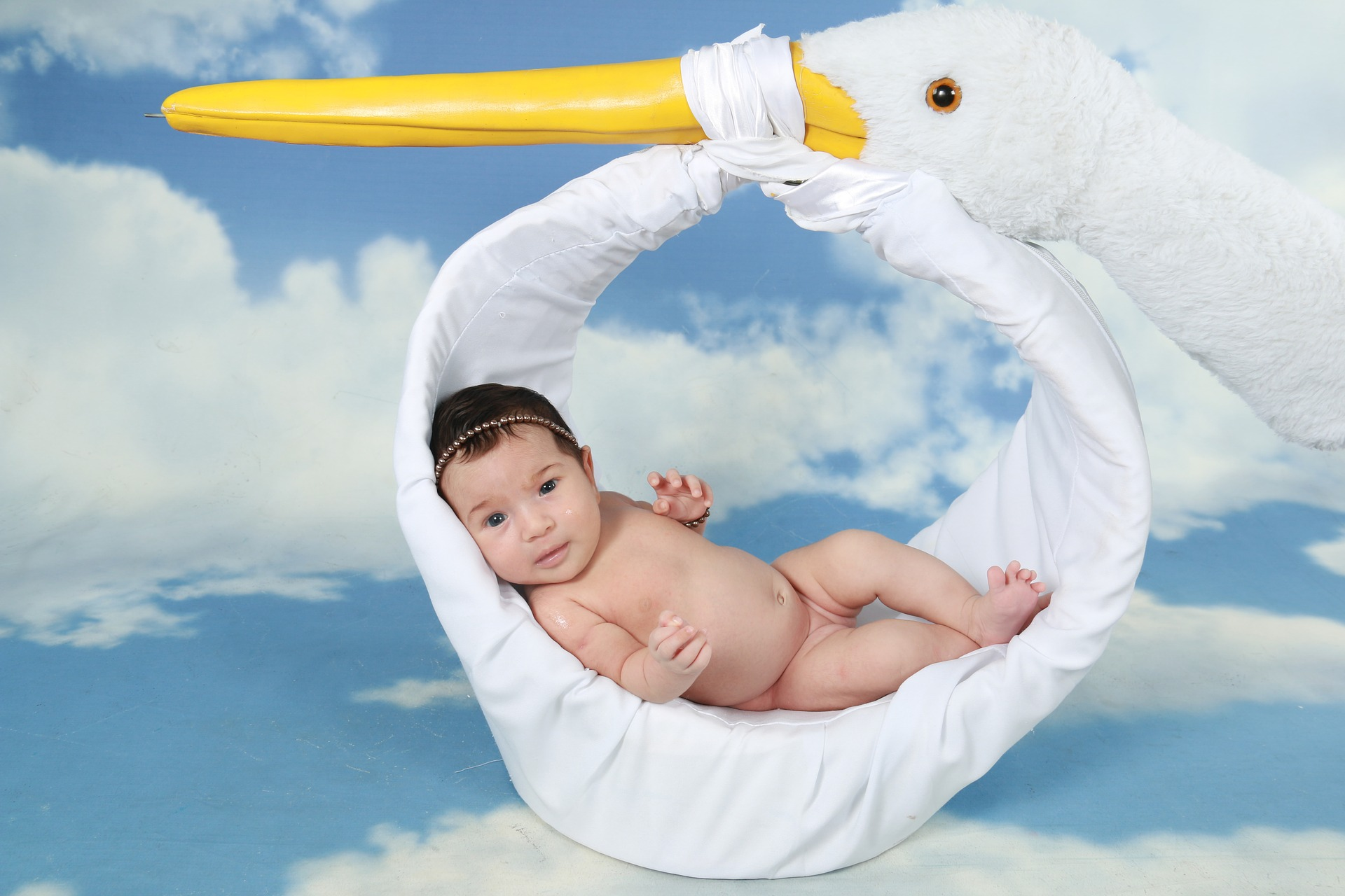 Baby being delivered by a stuffed stork